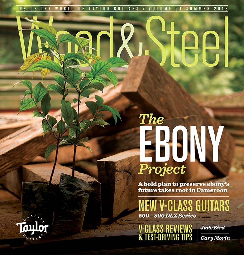 Woodsteel taylor guitars download pdf fandeluxe Image collections