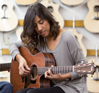 New Taylor 300 series with ES2