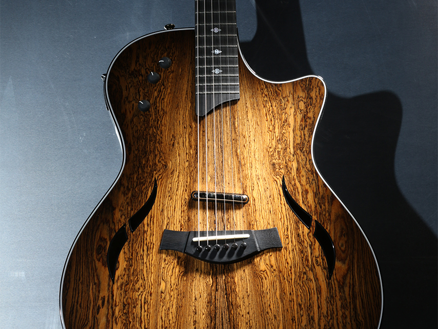 Custom Electrics & T5 Series Page | Taylor Guitars