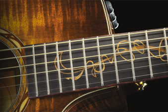 Fall 2011 Limited Edition Guitars from Taylor Guitars