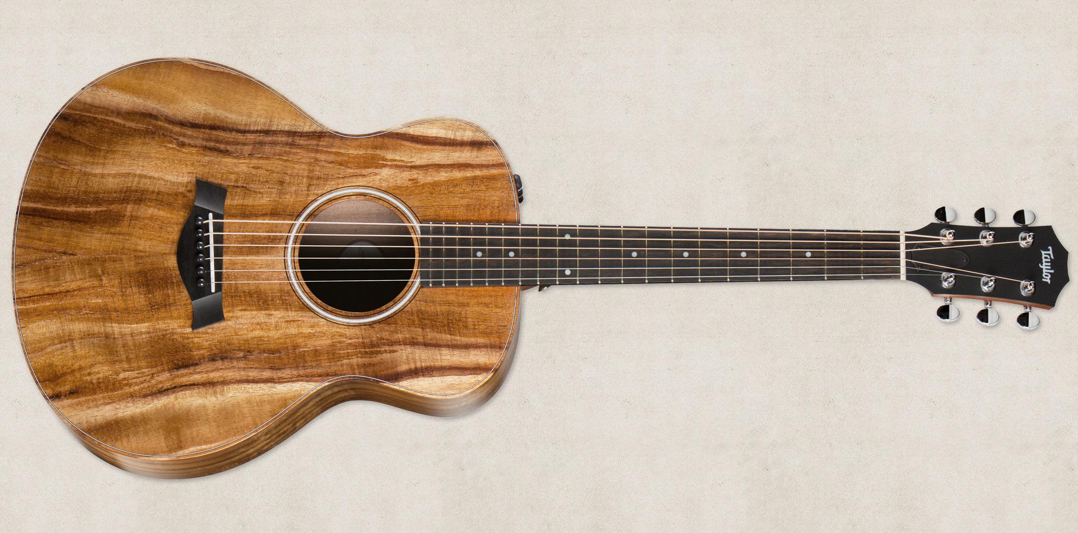 Gs Mini E Koa Fltd Taylor Guitars