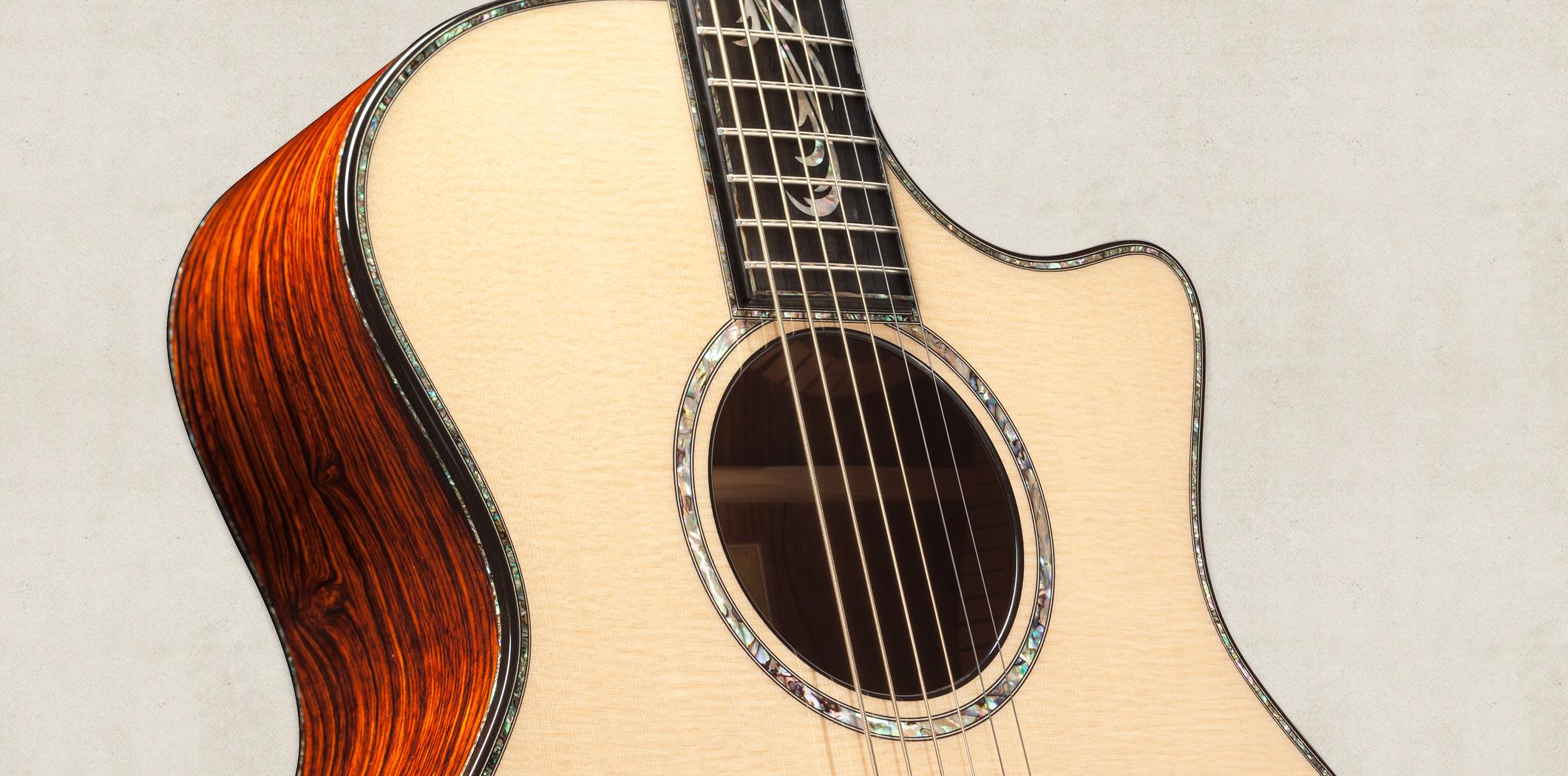 PS14ce   Taylor Guitars