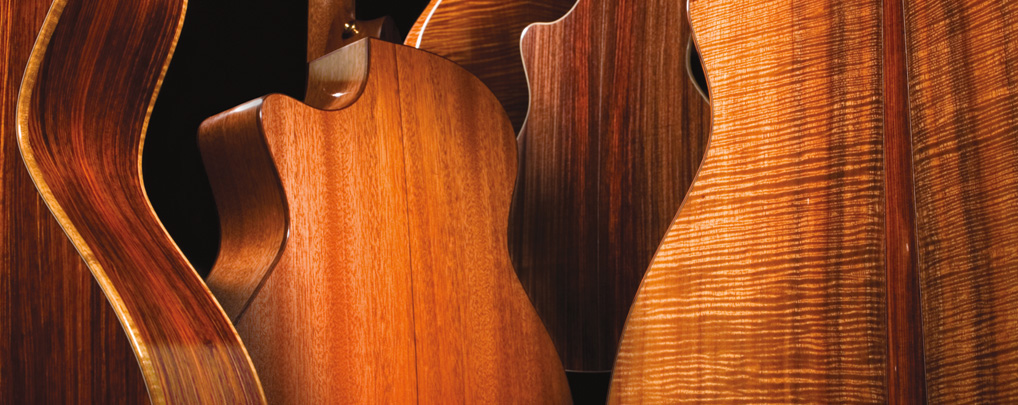 Browse Taylor guitars by body woods.