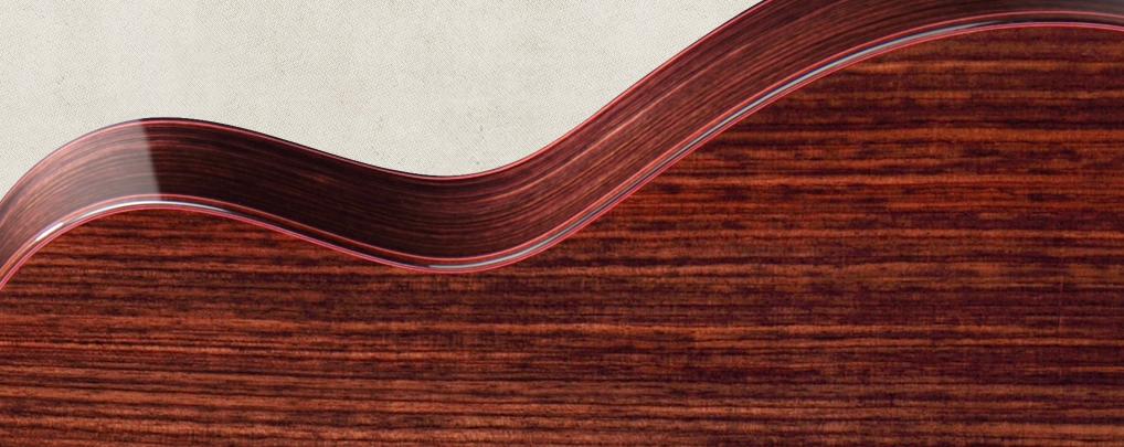Cách chọn đàn Guitar dựa vào các loại gỗ 5