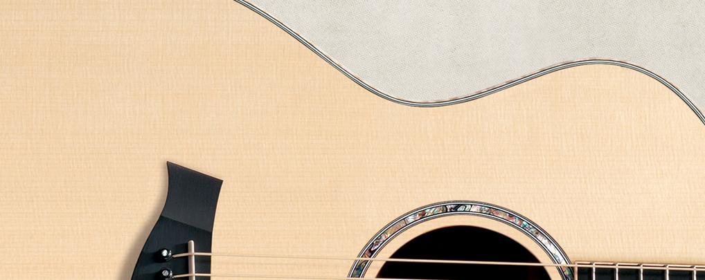 Cách chọn đàn Guitar dựa vào các loại gỗ 1