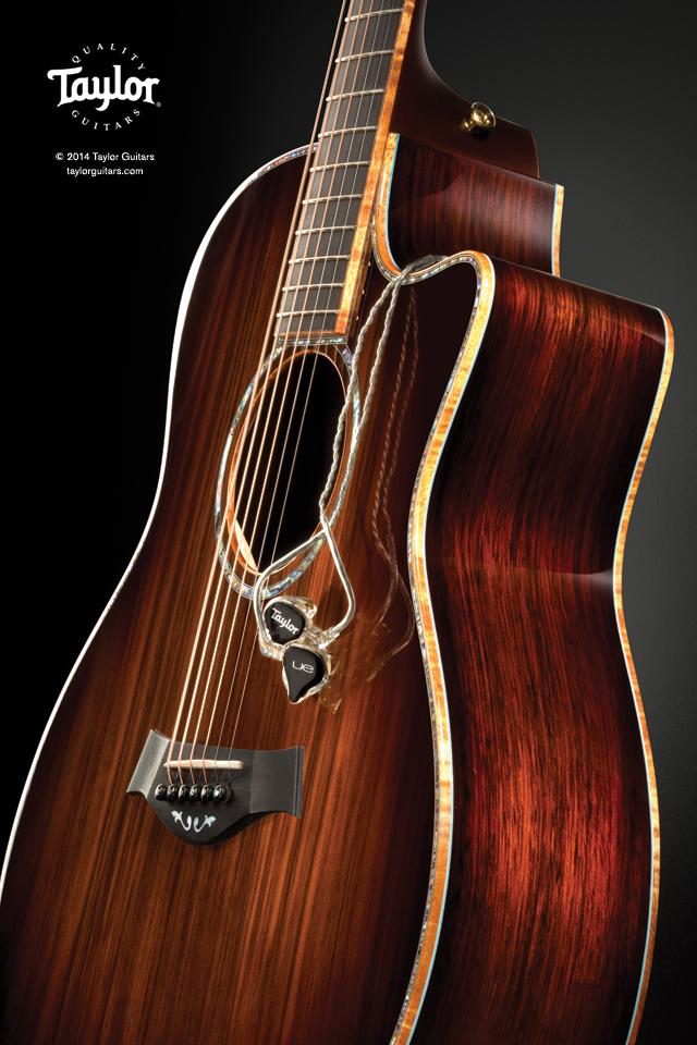 Ultimate Custom Taylor Thank You Taylor Guitars