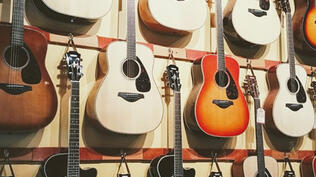 Rufus Guitar Shop | Taylor Guitars