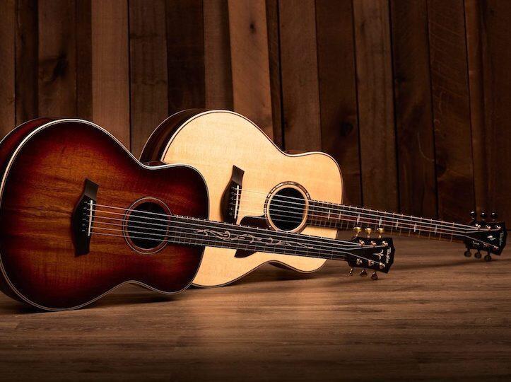 2020 New Guitars Taylor Guitars