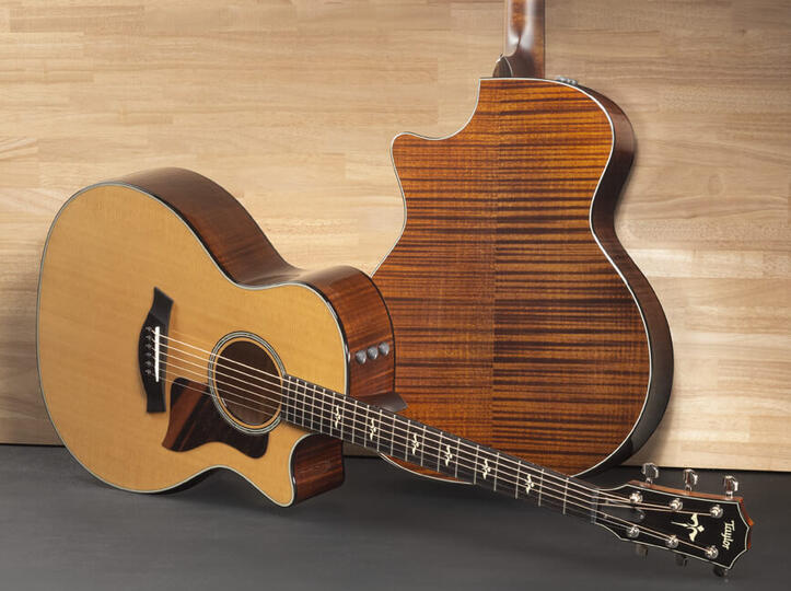 Acoustic Guitars By Series Taylor Guitars