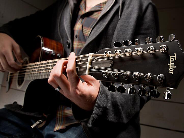 taylor guitars tone