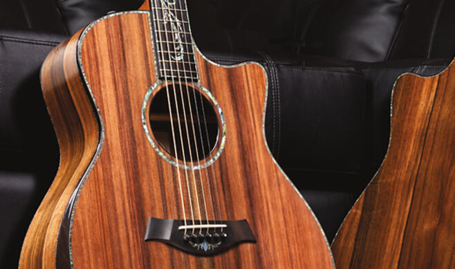 Koa and Cocobolo Fall Limiteds : Taylor Guitars