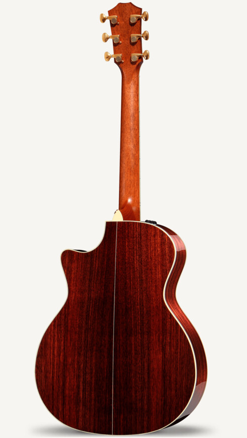 Dave Matthews Signature Model Taylor Guitars