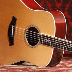 Guitar Taylor Baby Electronics