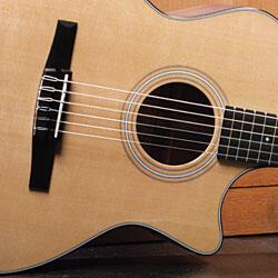 Taylor Guitar ES-N