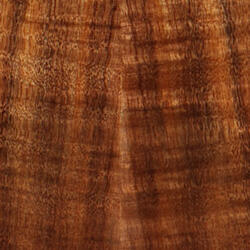 Guitar Taylor GS Mini-e Koa Top Wood