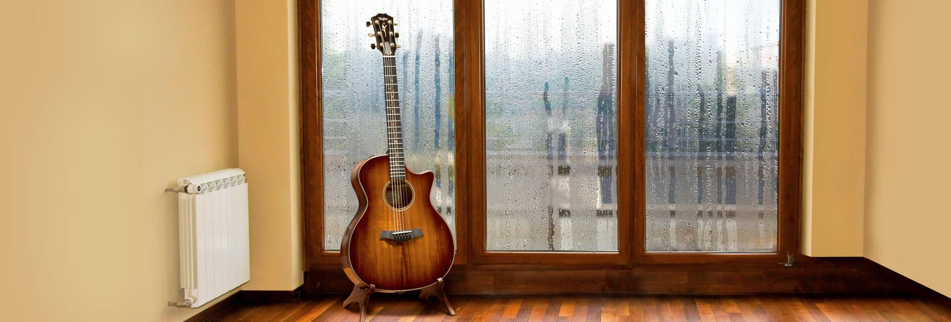 Guitar Health Monitoring System | Taylor Guitars