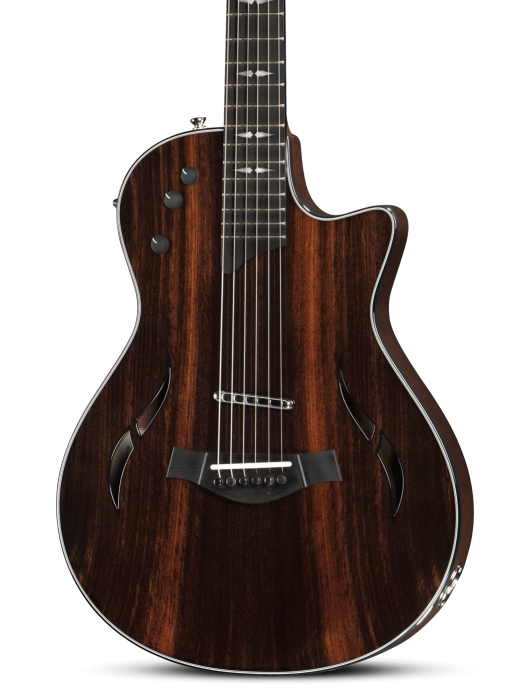 T5z electric series taylor guitars asfbconference2016 Images