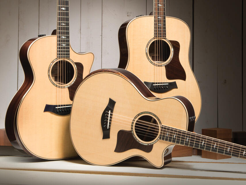Taylor Guitars 800 Deluxe Acoustic Guitars