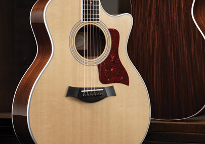 taylor guitars număr de serie dating ghid dating online pentru părinții singuri