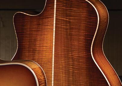 taylor guitars tonewoods