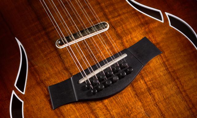Dual Compensated Saddle Taylor Guitars